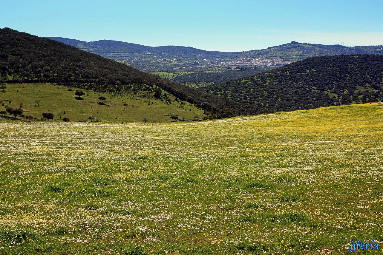 Sierra de María Andrés